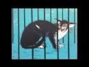 Вторая международная выставка Портрет кошки проходит в Санкт-Петербурге в выставочных залах Союза художников (Большая Морская