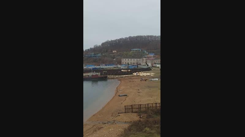 Китовая тюрьма в бухте Средней, Приморский край, 5 ноября 2018г.