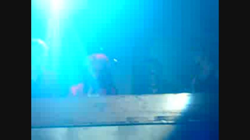 DJ-set Cinema Bizarre