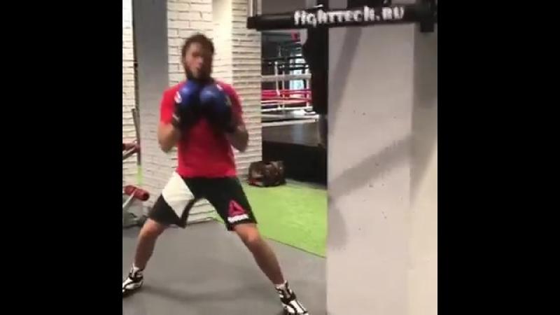 Boxing Dive
