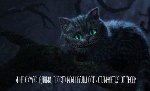Фото №456245176 со страницы Ульяны Дудниковой