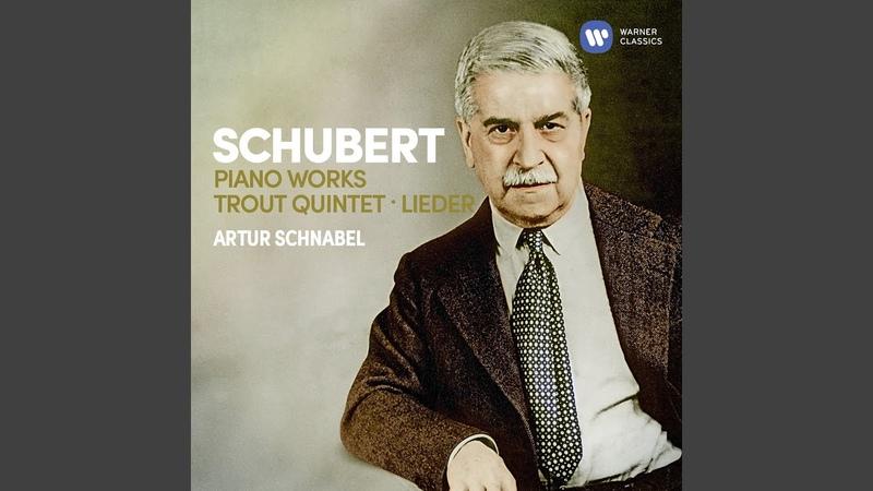 Piano Sonata No. 21 in B-Flat Major, D. 960: II. Andante sostenuto