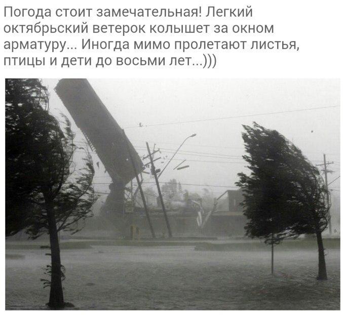 http://cs543104.vk.me/v543104994/8773/8NbkPf2hMR0.jpg