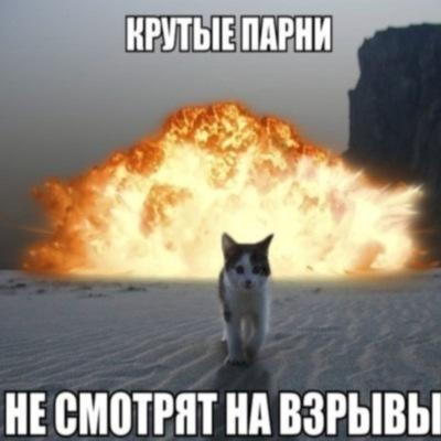 Дмитрий Каштанов, 26 марта 1994, Москва, id7133655