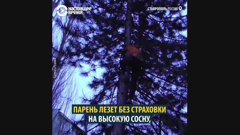 Спасение котёнка 🐈 Регион 26 Ставрополь