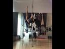 Pole Dance. Natasha Wang3