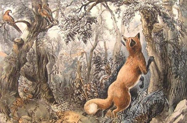 Лиса в лесу Головоломка опубликованная в 1872 году американской типографией Currier & Ives. На изображении помимо куропаток и лисы предлагалось найти образы лошади, ягненка, дикого кабана и множество женских и мужских лиц.