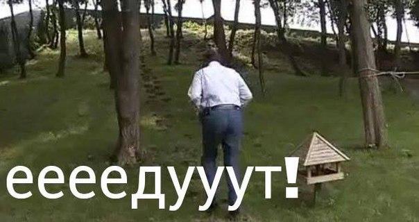 Двое украинцев пострадали от взрывов петард - Цензор.НЕТ 9858