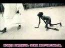 Самое сильное видео, которое разбило сердце полтора миллиардам мусульман!