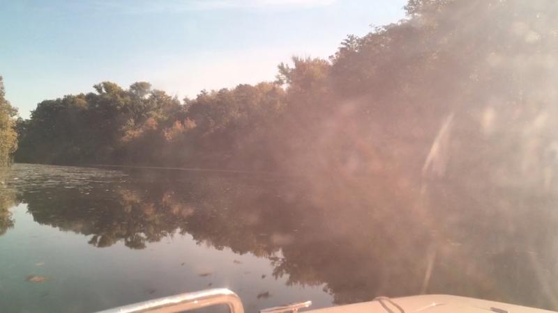 Река Цна!