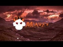 Bring Me The Horizon - Can You Feel My Heart (Raw Hardstyle Remix By Nüwa) [MONKEY TEMPO]