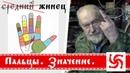 Пальцы Русское название пальцев
