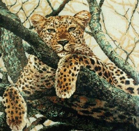Ирина, вот этот леопард