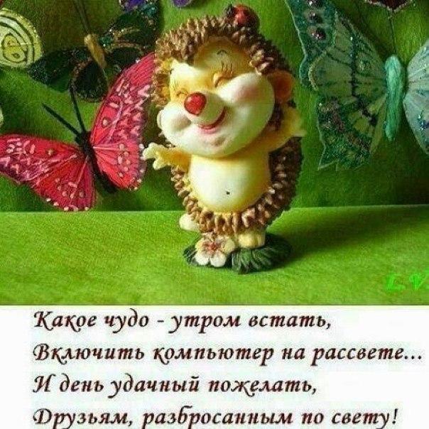 http://cs618425.vk.me/v618425595/1653c/EuGd9XGfztE.jpg