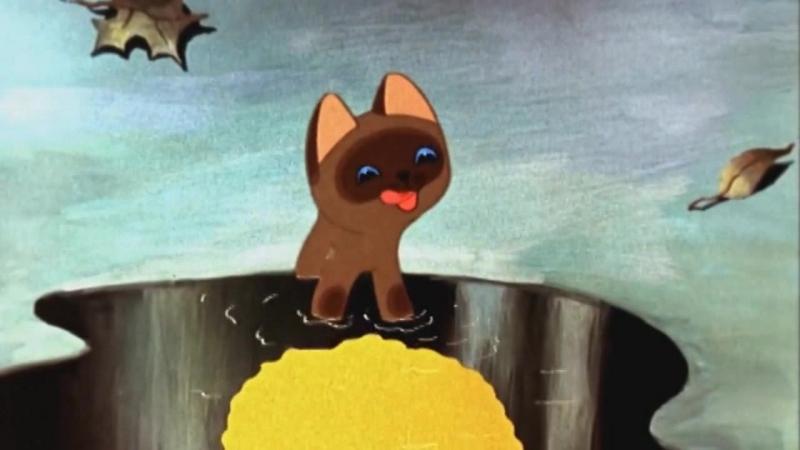 Котёнок по имени Гав - я ее лизнул