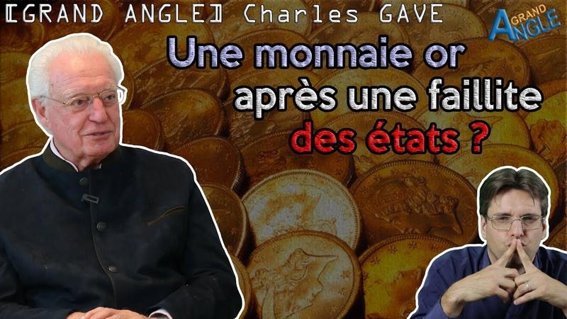 Retour à une convertibilité en or après la faillite des États Européens ? ft. Charles GAVE