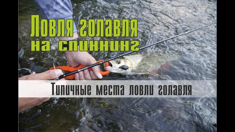 Ловля голавля на спиннинг. Типичные места ловли голавля на малых и средних реках.