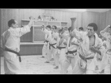 This is Ashihara karate! Ashihara karate fighting and trainig spirit