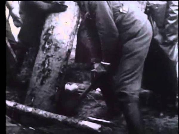 №17 2 28 10 1941 Доставка зерна и фуража Дитль возглавляет братьев по оружию Раздача Железных крест
