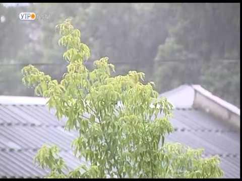 В ближайшие дни циклон принесет затяжные дожди и порывистый ветер