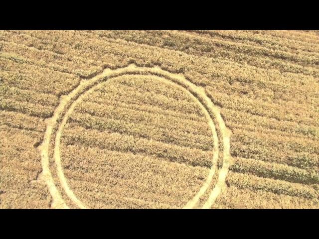 Peroni, Malto 100% Italiano. Svelato il significato dei cerchi nei campi.