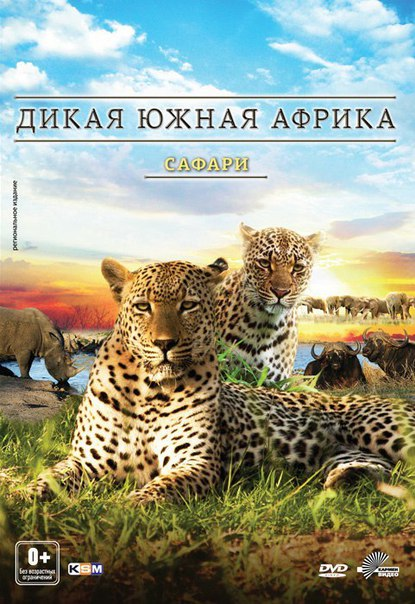 Дикая Южная Африка: Сафари