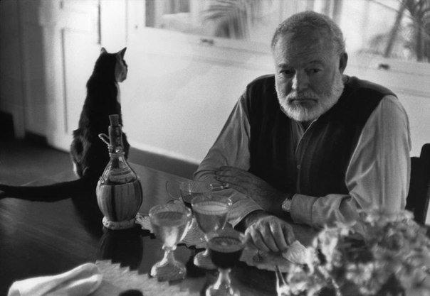 Эрнест Хемингуэй и его кот. Куба. 1954 год.