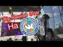 Big Russian Boss на VKFest Полное выступление Большого русского босса на VKFest 2018