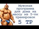 Мужская программа для дома на массу из 5 ти тренировок (5 тр)