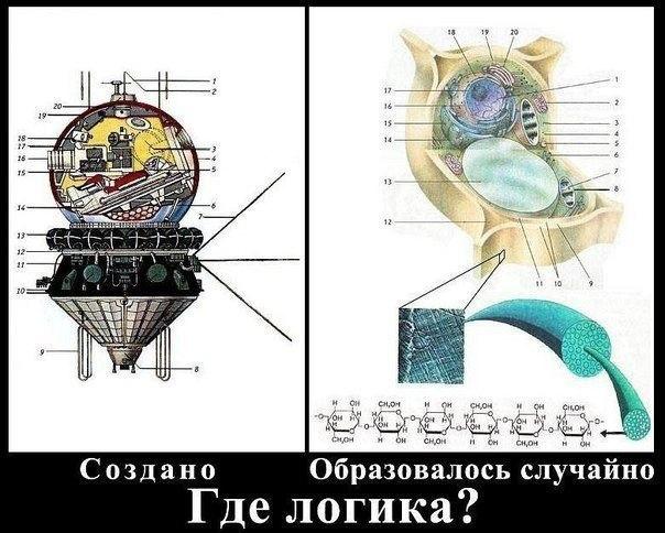 http://cs419316.vk.me/v419316600/223a/FLlEO7QtMok.jpg