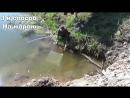 Ловля верхоплавки Поймать ЖИВЦА Ловля на банку на морду и на марлю