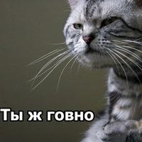 Максим Сапожников, 4 октября , Нефтеюганск, id194662764