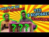 What's In The BOX Challenge | ЧТО СПРЯТАНО В КОРОБКЕ ЧЕЛЛЕНДЖ! Чуть не загрызла!