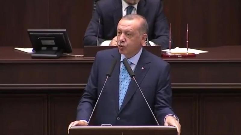 """Weidel-Erdogan-Besuch schadet Deutschland–Türkischer Präsident ist """"in der Wolle gefärbter Islamist"""""""