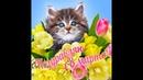 Прекрасная музыкальная открытка с 8 марта/ З 8 березня! / Congratulations on March 8!