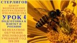 МОСКВА ГЕРМАН СТЕРЛИГОВ МЕД - БЕЗПЛАТНОЕ ОБУЧЕНИЕ ПЧЕЛОВОДСТВУ - УРОК 4 ПОДГОТОВКА К ВЗЯТКУ И РОЕНИЕ