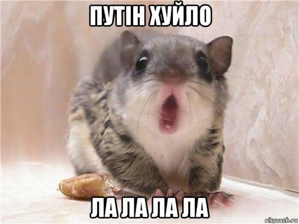 Наливайченко: 90% руководящего состава СБУ заменено - Цензор.НЕТ 5566