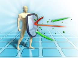 Иммуностимуляторы: 12 естественных модуляторов иммунной системы