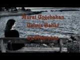 Murat Gogebakan - Gelmis Bahar.. by.67karabas