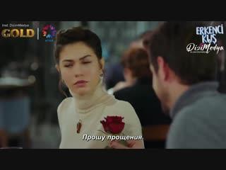 рп - Эмре просит прощения у Санем (рус.суб)