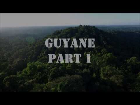 Rainforest by drone : French Guiana, Part 1