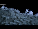 The Weirdest Bugs You've Ever Seen - Madagascar, Land Of Heat And Dust, Preview - BBC Two