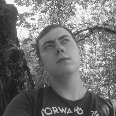 Илья Логеев