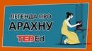 🔶 Легенда про Арахну Ted Ed на русском