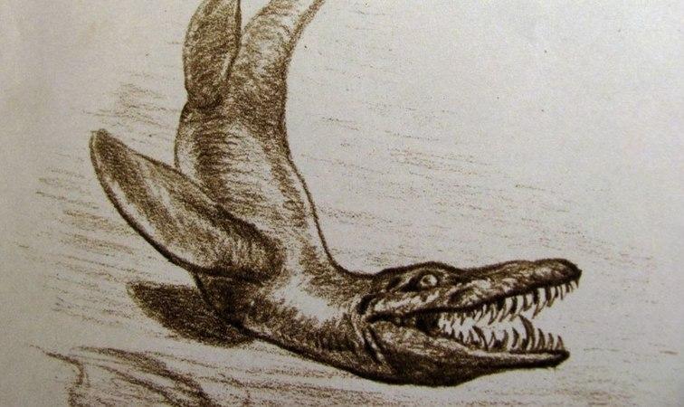 Советские книги о динозаврах