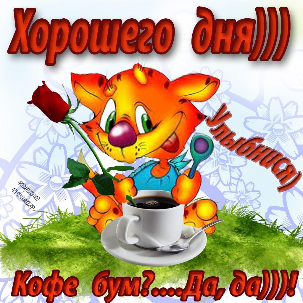 http://cs402126.vk.me/v402126864/3a86/yWoqggrc43o.jpg