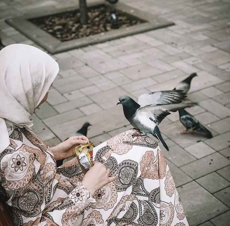 Будьте добры к созданиям Аллаха.