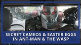 Ant-Man &amp The Wasp Director On Easter Eggs, Secret Cameos &amp Post-Credits Scenes