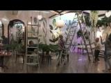 свадебное оформление в Новокузнецке. Свадьба в стиле Ботаника