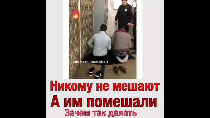 Kavkaz_tema_Bi9IcGGgkMk.mp4